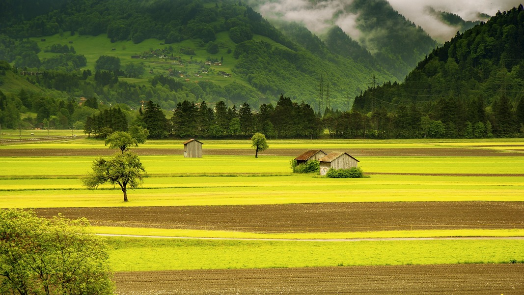 comprare terreni agricoli