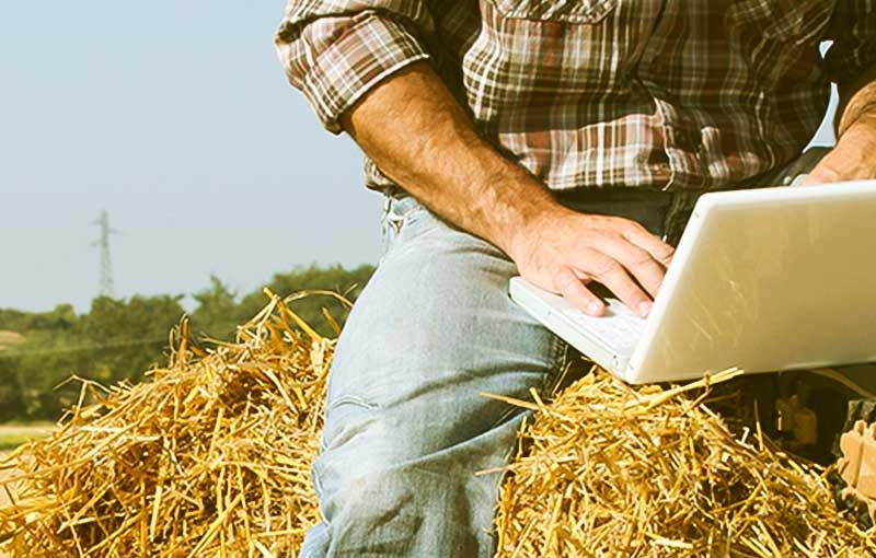 agricoltore al computer