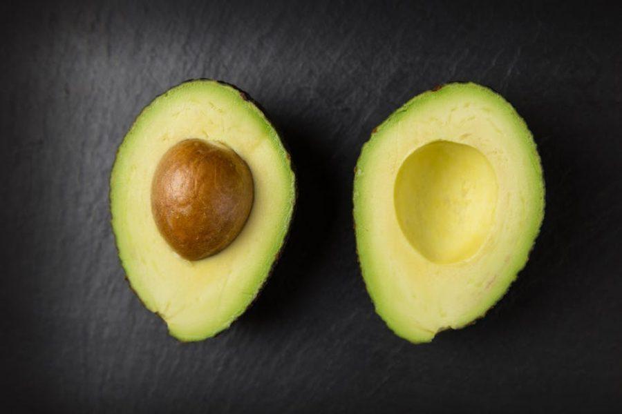 Colture da reddito come avviare una coltivazione di avocado for Avocado coltivazione
