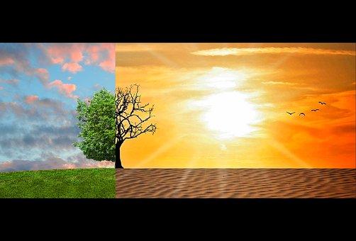 Chi sono i supereroi dei nostri giorni che combattono i cambiamenti climatici?