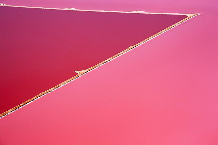 lago rosa australia hutt steve back hutt lagoon 02
