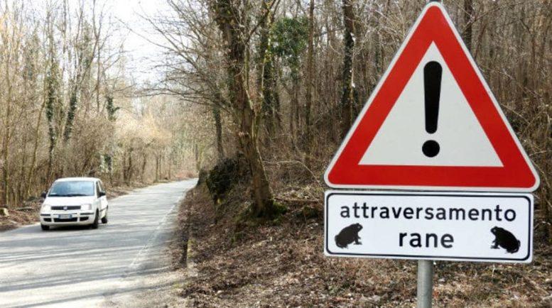 attraversamenti per animali - rospodotti piemonte