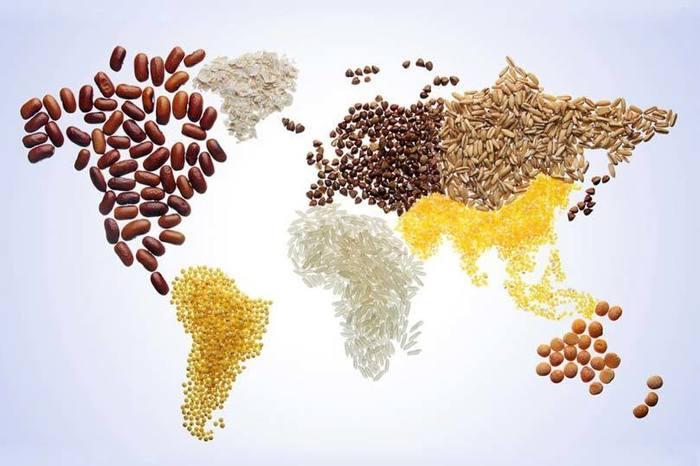 agricoltura-sostenibile-come-soluzione-per-il-problema-della-fame-nel-mondo