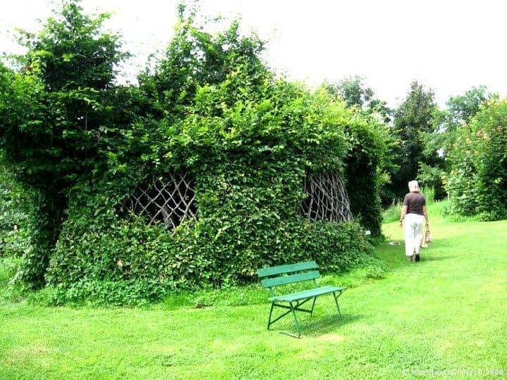 Arboscultura casa di alberi di Konstantin Kirsch e Herman Block