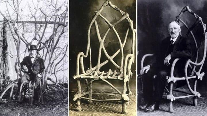 Arboscultura sedia di John Krubsack modellata con il tree shaping