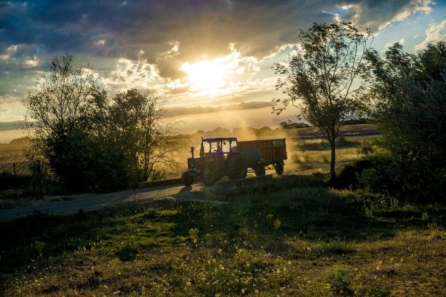 Bambino di cinque anni muore schiacciato da un trattore.