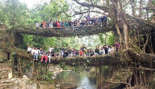 ponti-naturali-di-radici-di-Cherrapunjee-Umshiang-Double-Decker-Root-Bridge