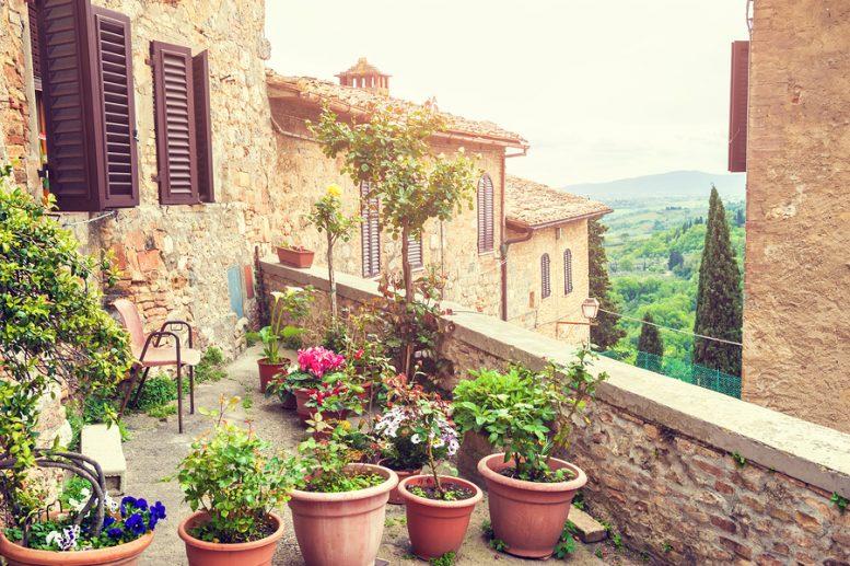 terrazzo con piante anti zanzare