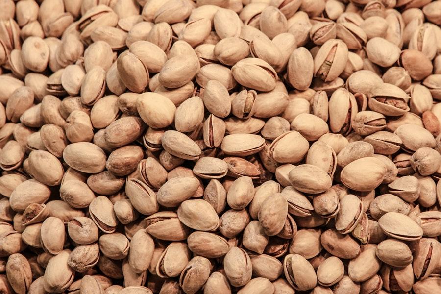 come coltivare il pistacchio
