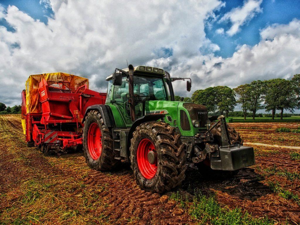 Fiere agricole ad Agosto