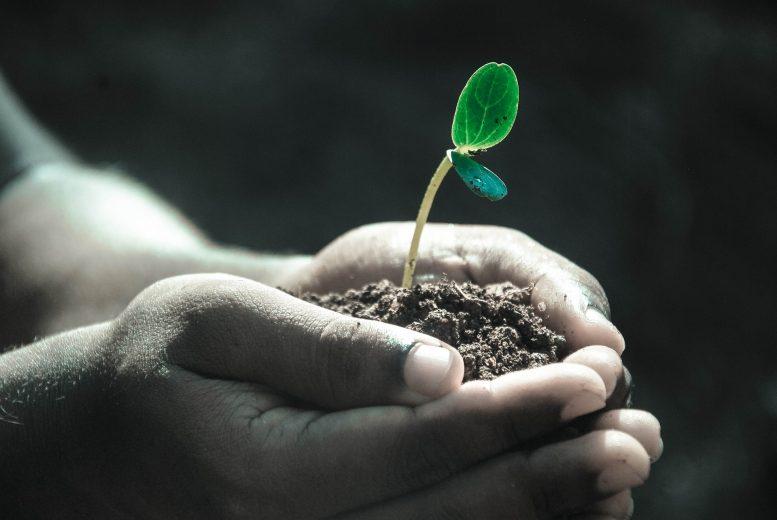 Partita IVA e agricoltura