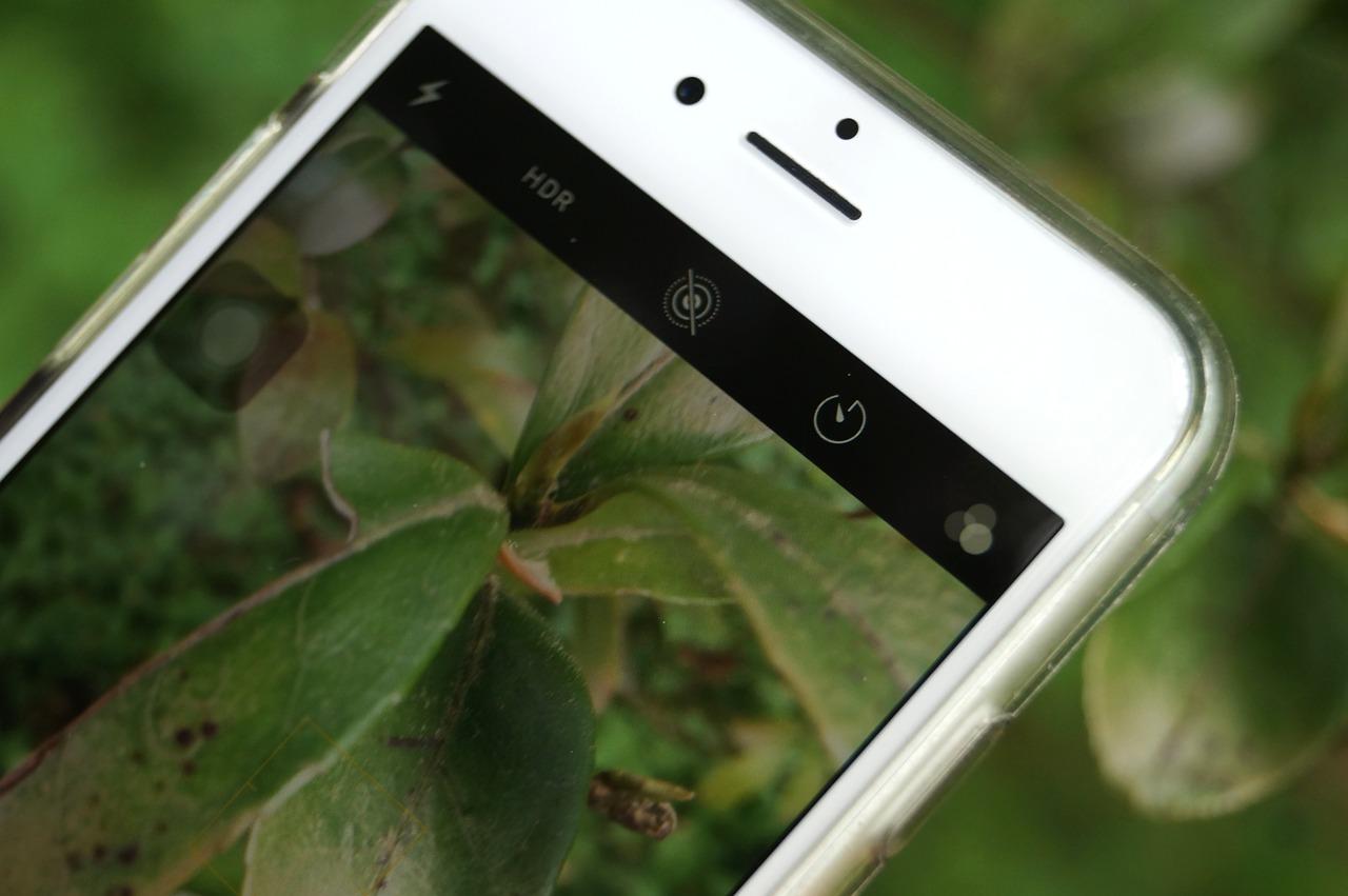 app che riconosce fiori e piante