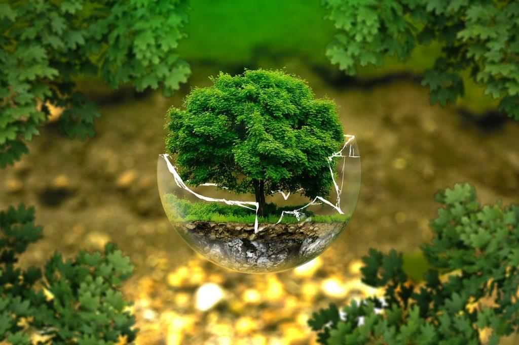 Rischi ambientali