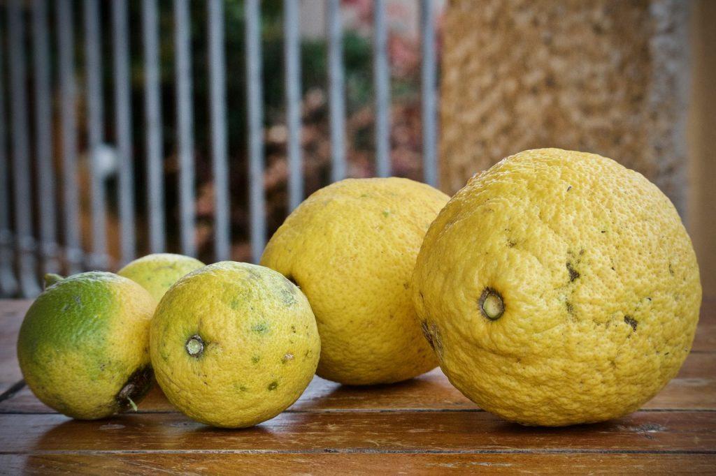 Piticchia del limone