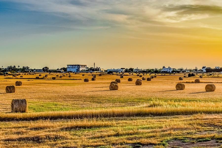valore di un terreno agricolo