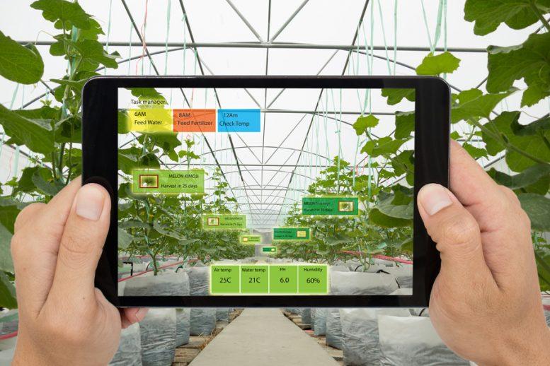 innovazioni in agricoltura