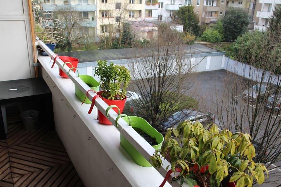 orto in terrazza