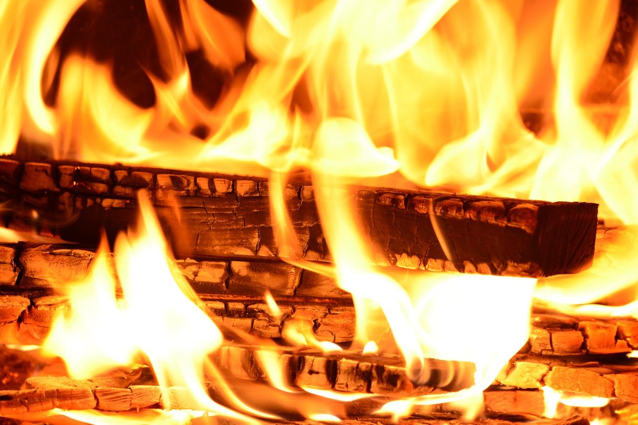 Proprietà Cenere Di Legna legna da ardere: caratteristiche e differenze. quale scegliere?