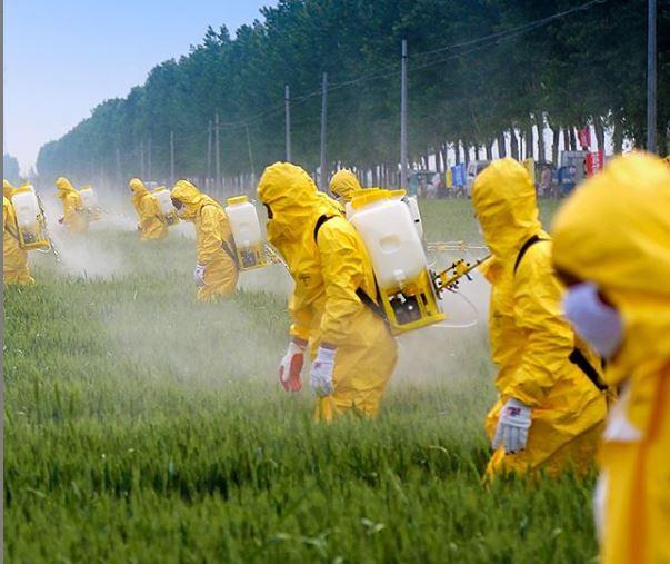 applicazione di agrofarmaci in eccesso per l agricoltura intensiva