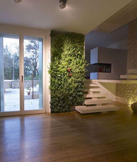 giardino verticale idroponica indoor