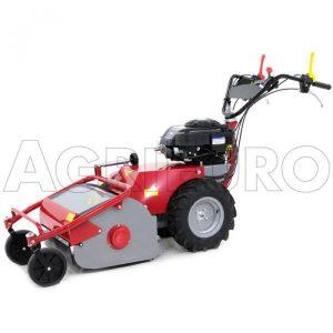 Meccanica Benassi TR 600