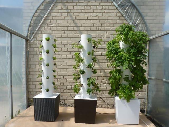 torri coltivazione aeroponica