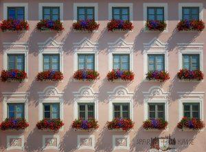 fiori da balcone pendenti