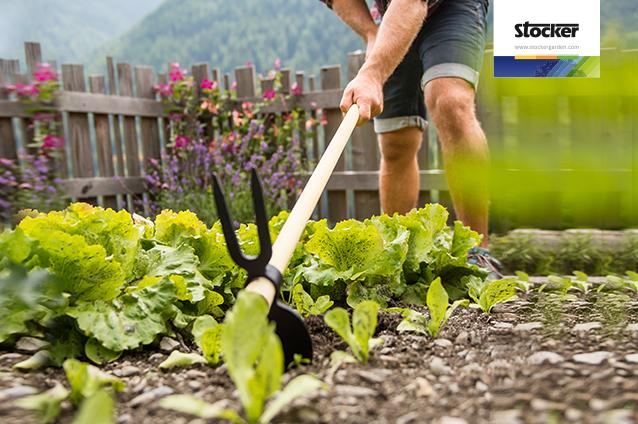 corsi giardinaggio online