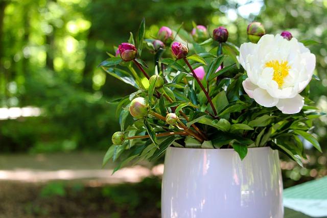 ciotole fiori primaverili